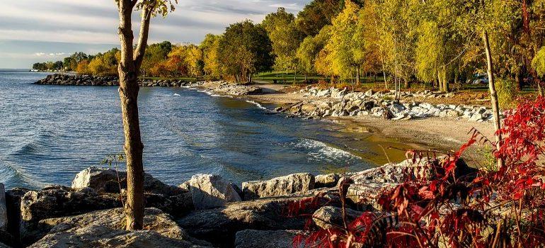 lake in Ontario, CA