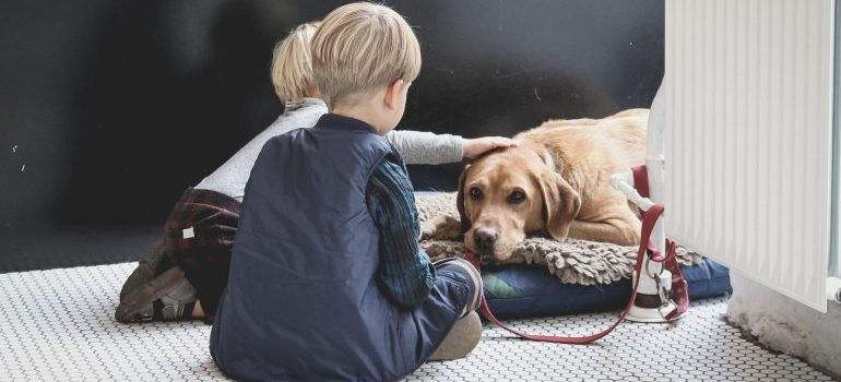 Two kids sitting next to a dog - pets on moving day